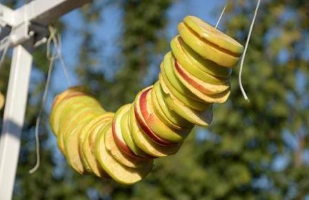 Нанизывание яблок на нить