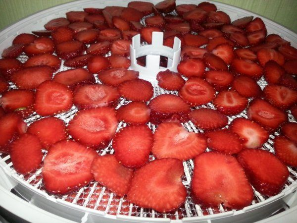 ezidri-strawberries-cut