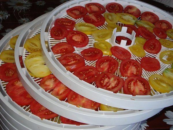 pomidory-pered-sushkoy-v-ezidri-ultra-1000-na-lotkah-web