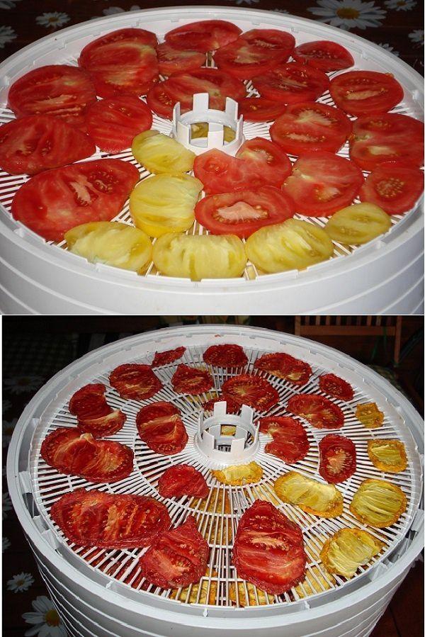 sushenye-pomidory-do-i-posle-ezidri-ultra-vert-web