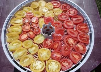 Рецепт сушеных помидоров